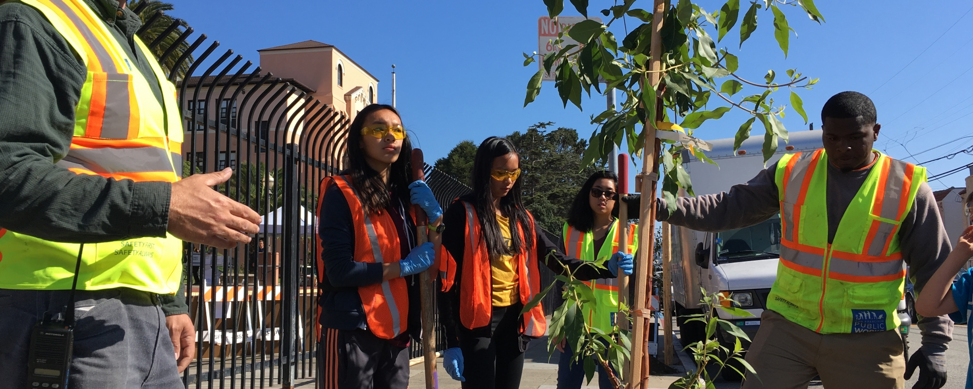 volunteers work with arborist to plant tree