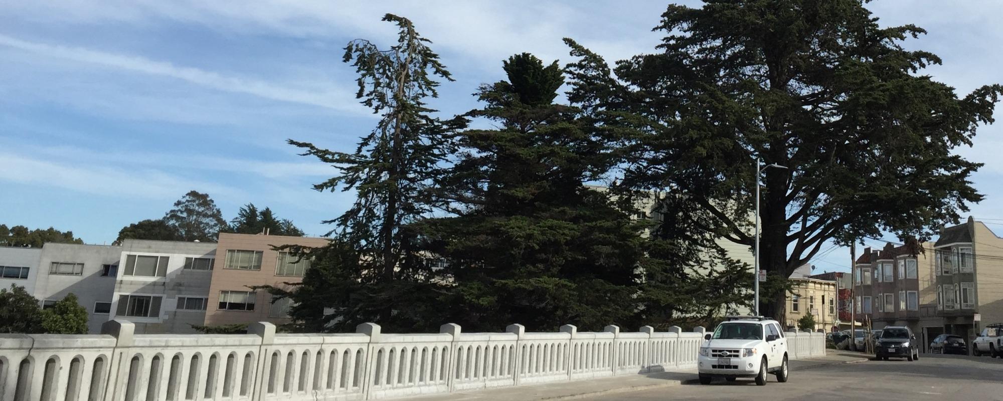 bridge reopened Dec 8